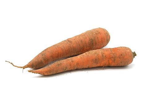 carottes-des-sables